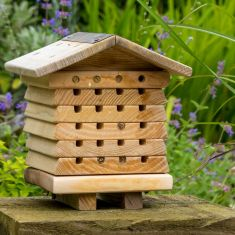 Wooden Six Tier Beehive