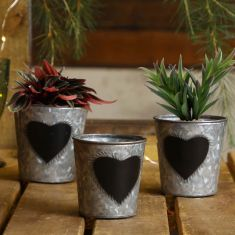 Set of 3 Potting Shed Planters Gift