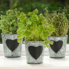 Set of 3 Vintage Zinc Chalkboard Herb Planters