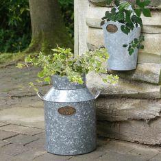 Country Garden Galvanized Zinc Planter Collection