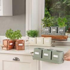 Windowsill Herb Planter Indoor Garden Collection