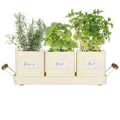 Set of 3 Cream Metal Herb Pots on Tray