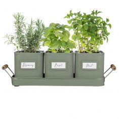 Set of 3 Green Metal Herb Pots on Tray