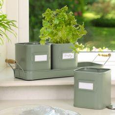 Set of 3 Sage Green Metal Herb Pots on Tray