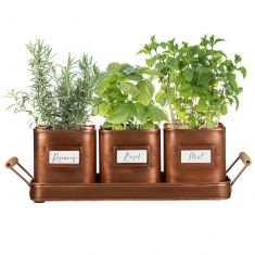 Set of 3 Copper Finish Metal Herb Pots on Tray