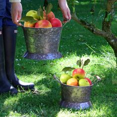 Set of 2 Vintage Zinc Garden Apple Picking Buckets