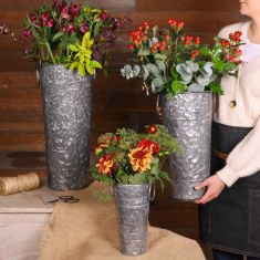 Traditional Florist's Plant Buckets