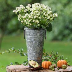 Small Galvanised Florist's Bucket