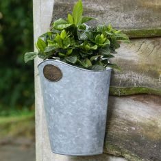 Country Garden Wall Hanging Planter with Brass Plaque