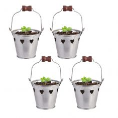 Set of 4 Country Seedling Pot Buckets