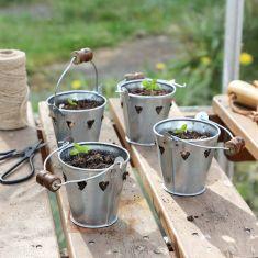 Pottering Around Seed Buckets