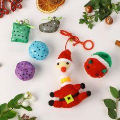 Cat's Christmas Toy Teaser Gift Set